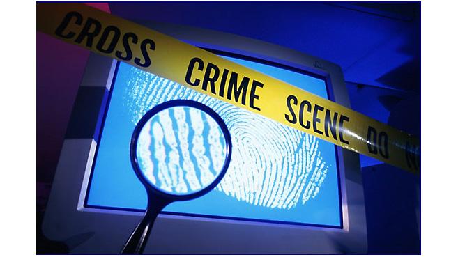 La mitad de los hogares ha sufrido un intento de fraude online